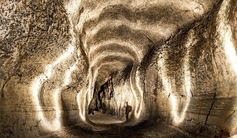 Ape Caves Battle Ground Washington Hotel